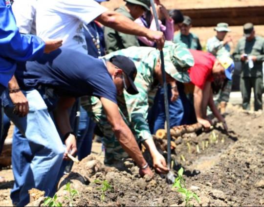 120 hect reas suma la fanb a plan agroproductivo zamora Lagunas para cachamas