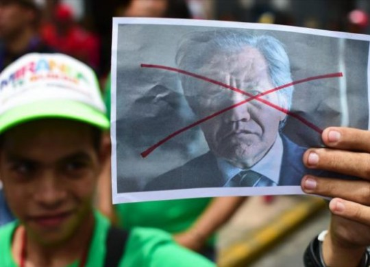 Foto: Cortesía PSUV Miranda
